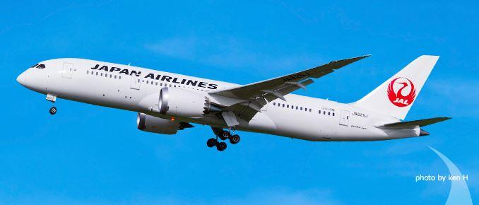 航空会社の空席状況